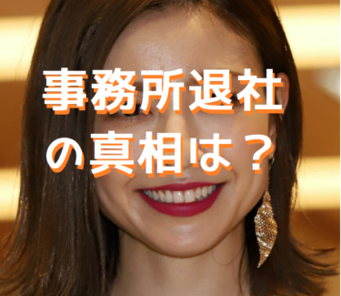 片瀬那奈の事務所退社の理由は?彼氏逮捕や虚偽報告で事実上のクビ宣告